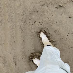 自分の足で歩いて、自分の目で見て