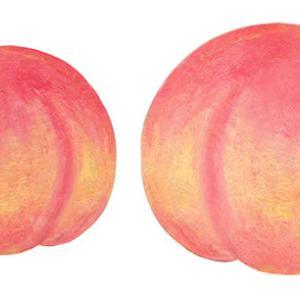 【 福島県産の桃 】「こんなにおいしいものは食べたことがない」ドミニカ共和国の選手