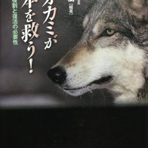 ニホンオオカミのこと〜part《4》日本オオカミ協会:再導入