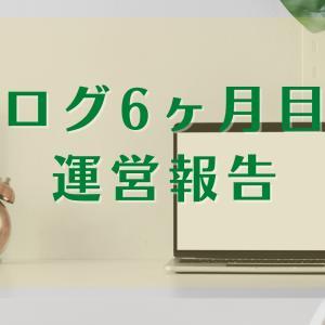 【ブログ運営報告】6ヶ月目はイヤイヤ期に突入!収益とアクセス(PV)の変化について!