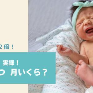 【双子妊婦さん・双子ママ必見】赤ちゃんの紙おむつ代いくらかかる?【費用実録】