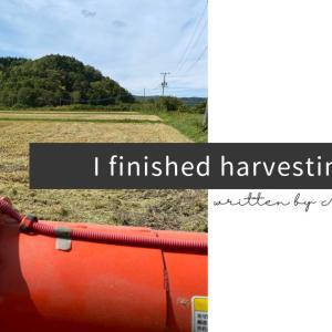 I finished harvesting rice