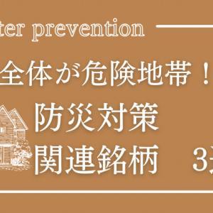 【公開】防災関連銘柄!地震・台風に備えるディフェンシブ株