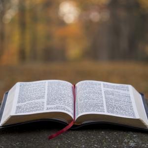 【オススメの本もご紹介】本を読むことの重要性