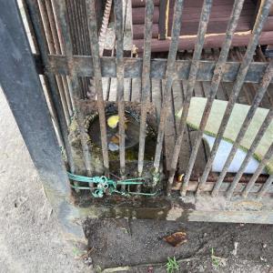 館山市城山公園のニホンザル続報③ 母猿は新飼育場所を工事中。娘猿は、改善の予定なし……