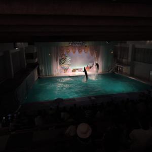 イルカ長距離輸送のはじまり―閉館する「京急油壺マリンパーク」の歴史を知ってください