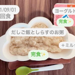 【162日目】離乳食記録