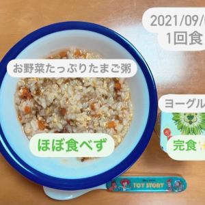 【163日目】離乳食記録