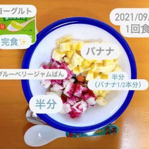 【167日目】離乳食記録
