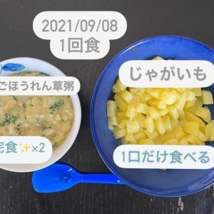 【169日目】離乳食記録