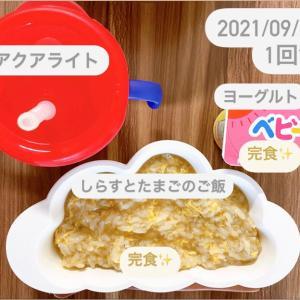 【185日目】離乳食記録