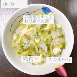【187日目】離乳食記録