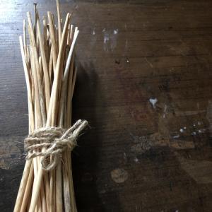 チャイブの茎