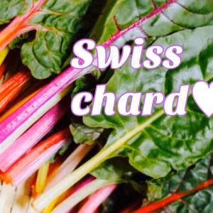 スイスチャードの説明書♥