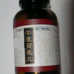 牛車腎気丸 κ(カッパ)オピオイド受容体を介した強力な鎮痛作用