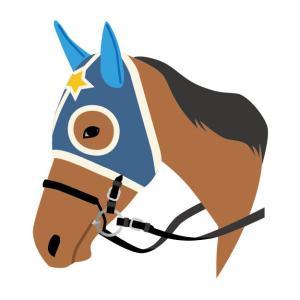 冠号ごとに一番カッコいい馬名を決めよう