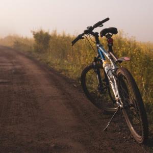 【自転車保険の義務化】家族型の保険を比較 値段が安いおすすめは?