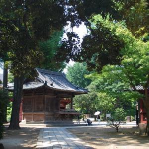 下町風情あふれる谷根千エリアの古社、根津神社のパワースポットで心を洗う
