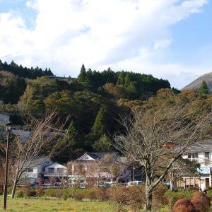 東京から日帰り箱根湯本の旅 非現実の世界に浸れる「天成園」の温泉 宮の下の可愛い「ナラヤカフェ」