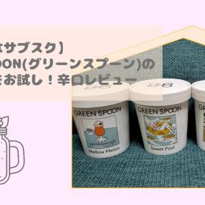 【辛口レビュー】おしゃれなサブスク~GREEN SPOON(グリーンスプーン)のスムージーをお試し~