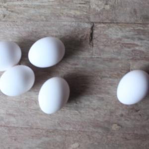 離乳食でちょっと不安な卵白のあげ方は?進め方やスケジュールを紹介