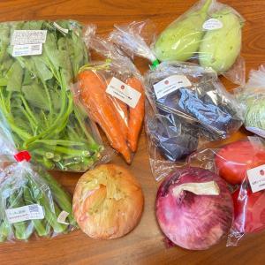 【安曇野紹介】オーガニック野菜取り扱い「よろづやいっかく」さんでお買い物!