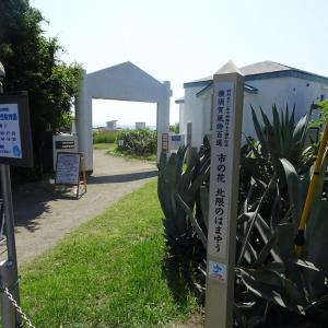 横須賀市・天神島