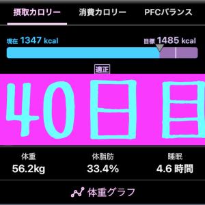 実録!ずぼらダイエット40日目