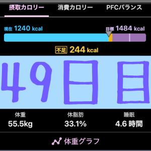 実録!ずぼらダイエット49日目