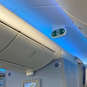 空飛ぶ緑のピクトグラム