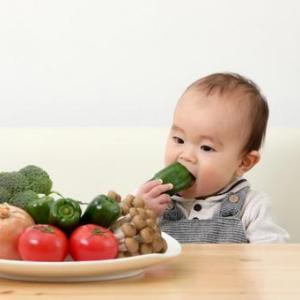 離乳食(1歳~1歳6ヵ月)パクパク期~上の子の下の子失敗談