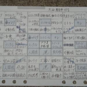 大谷翔平トップタイ 46号 なるか
