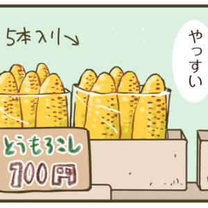 トウモロコシの実が詰まらない夏