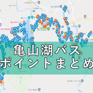 【永久保存版】亀山湖(ダム)バス釣りポイントマップ作りました!