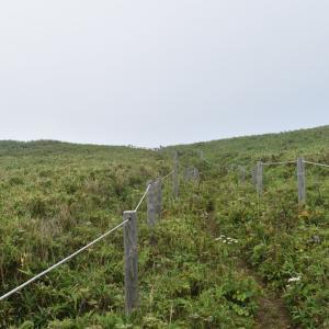 89日目 礼文滝のある海岸 礼文島→利尻島