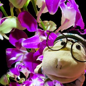 母様に花束を・・