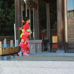 富岡八幡宮と富岡総合公園