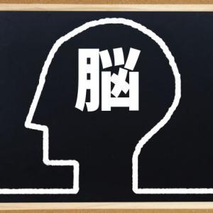 脳と言葉の関係