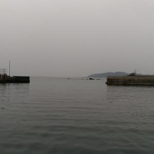 漁港と釣り人