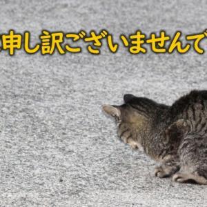 コロナに打ち勝った証の東京オリンピックって?
