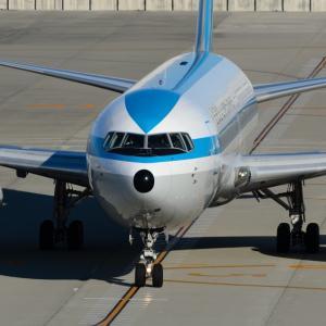元ANA「モヒカンジェット」,エアドゥ「ベアDoジェット」JA602Aが退役