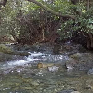 川遊びとふるさと納税