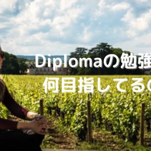気づいたら独学からDIplomaへ。私が勉強し続ける理由
