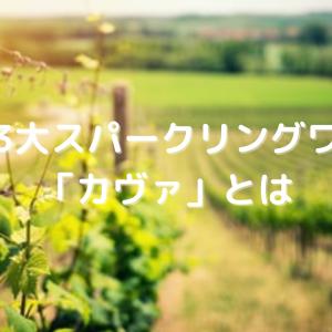 世界3大スパークリングワイン「カヴァ」とは