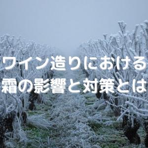 【よく出る!】ワインと霜が与える影響と対策について