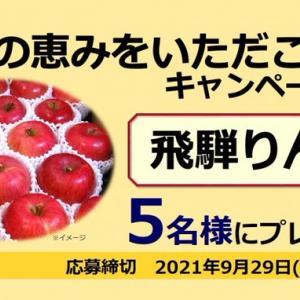 【懸賞】岐阜県JAグループ・飛騨りんご1ケース