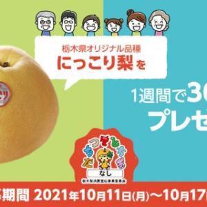 【懸賞】seasoning・にっこり梨1箱