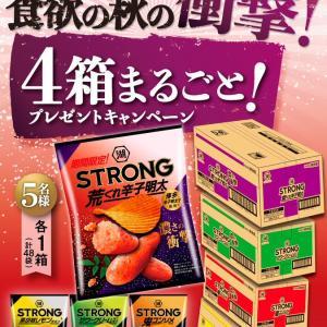 【懸賞】湖池屋・湖池屋STRONG 4箱