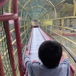 福岡県の公園で子供と長時間遊べる公園一覧