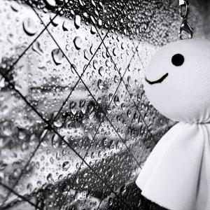 【雨の日】室内でおすすめの過ごし方4選